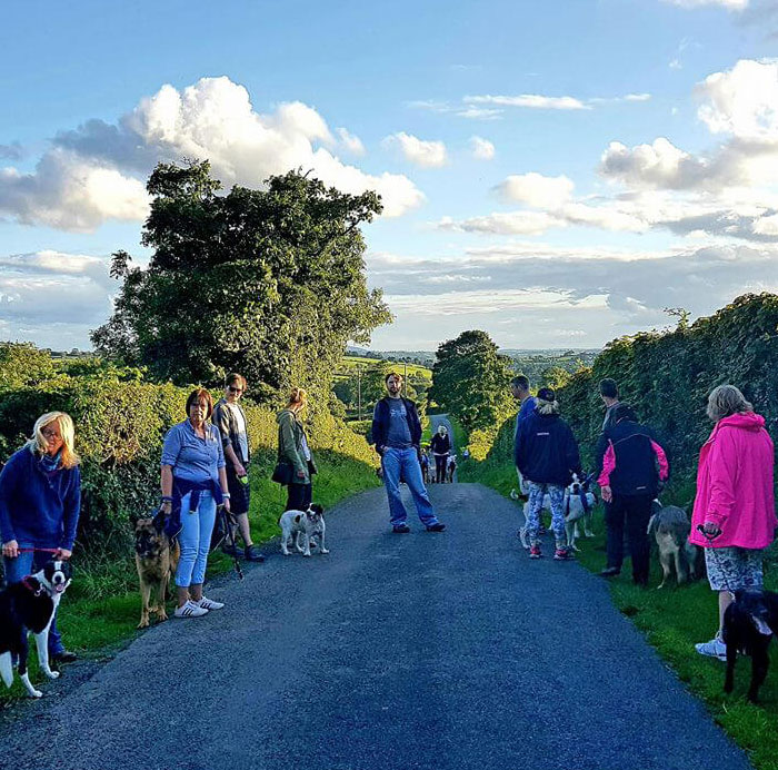 Beechgrove Doggy Fun Park - Specialised Socialisation Groups